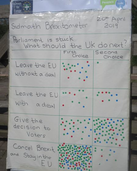 Voters were given the choice on how to break the Brexit deadlock. Picture: Devon for Europe