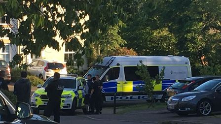 A number of police vehicles were seen in Baker Close in Sidmouth on Tuesday evening. Picture: Joelle