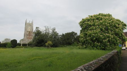 I was over at a plant sale at Broadclyst Church, on Saturday 18th May 2019. Picture: Luke Eveleigh