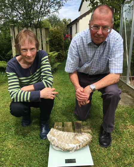 Stephen and Stella Huyshe-Shires with the 5.5kilo mammoth tooth found in their garden. Picture: Clar
