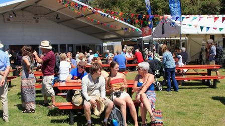 The Ham. Picture: Sidmouth Folk Festival