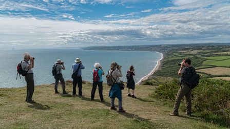 The Group on Golden Cap. Picture: Bob Reynolds
