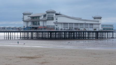 Walking the Dog at Weston. Picture: Mike Hawkridge