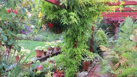 An open garden event is taking place over the Bank Holiday. Picture: Lynette Talbot