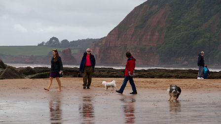 Doggy Dash on Sidmouth beach. Ref shs 40 19TI 1971. Picture: Terry Ife