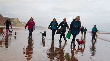 Doggy Dash on Sidmouth beach. Ref shs 40 19TI 1960. Picture: Terry Ife