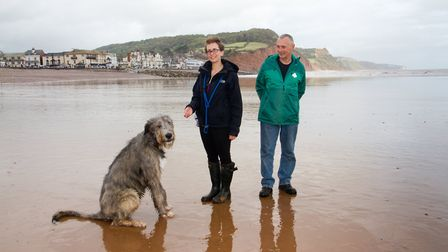 Doggy Dash on Sidmouth beach. Ref shs 40 19TI 1954. Picture: Terry Ife