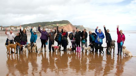 Doggy Dash on Sidmouth beach. Ref shs 40 19TI 1945. Picture: Terry Ife