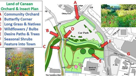 Greener Ottery's plans to create a community orchard and wildmeadow around Land of Canaan. Picture:
