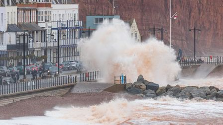 Big waves in Sidmouth. Picture: Rob Chidgey