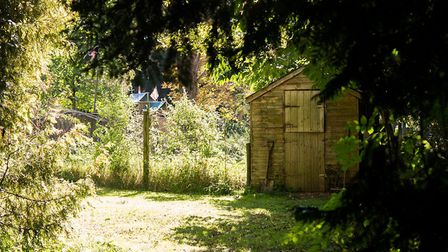 There are acres of woodland and gardens to explore. Picture: Alex Walton