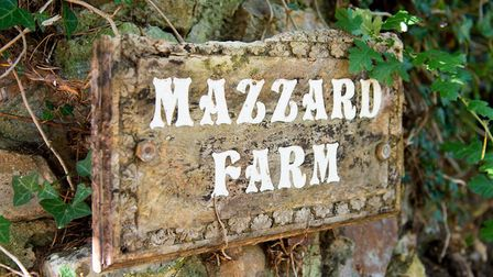 Mazzard Farm. Picture: Alex Walton