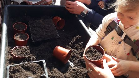 Planting seeds outside Sidmouth Library. Picture: Sidmouth Library