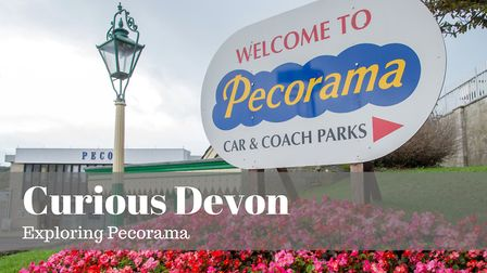 Curious Devon takes a tour around Pecorama. Picture: Alex Walton