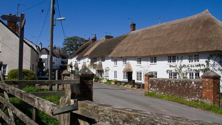 Sidbury cottages. Picture: Terry Ife