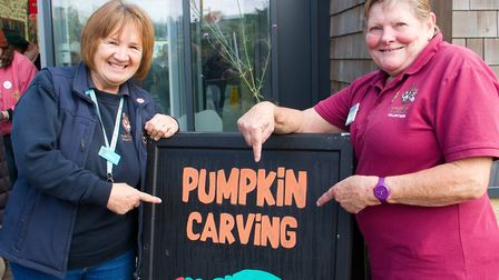 Pumpkin carving at Sidmouth Donkey Sanctuary. Ref shs 43 19TI 2550. Picture: Terry Ife