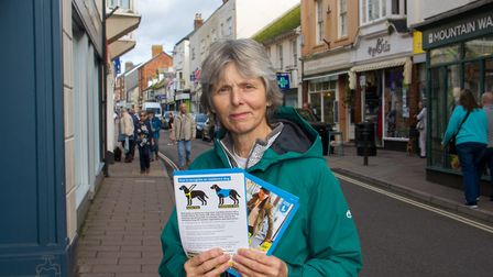 Carol Stanley with her leaflets for Assistance Dogs. Ref shs 42 19TI 2227. Picture: Terry Ife