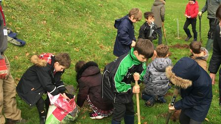 Youngsters from St John's School planting trees. Picture: Sarah Williams
