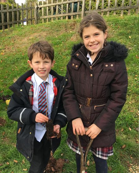 Youngster sfrom St John's School planting trees. Picture: Sarah Williams