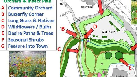 The planned community orchard and wildmeadow around Land of Canaan. Picture: Sharon Scott