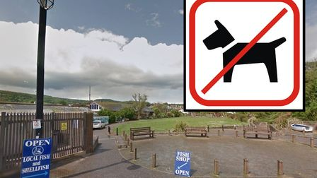 Calls for dogs to be banned from selected public areas in Sidmouth - including the Sidford Playing F