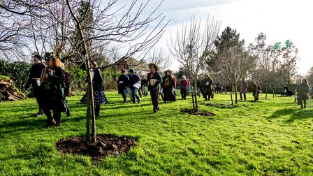 Inspecting the trees in the community orchard. Picture: Jeff Ridge