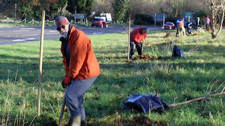 The first tree planting of 2020 in Sidmouth - Jim Wright volunteer. Picture: Sidmouth Arboretum