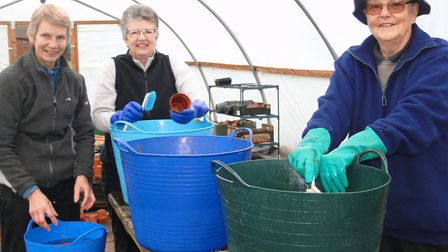 Sue Goode, Anne Leake and Bobby Stacey hard at work washing the plant pots. Picture: Sidmouth in Blo