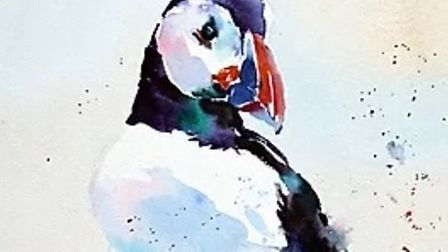 A puffin painted by Jake Winkle Picture: Provided by artist