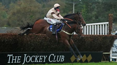 Action from Exeter races. Picture: EXETER RACECOURSE