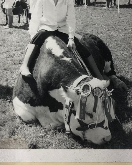 A prize Hereford bull at the show, with the daughter of its owner. Picture: Devon County Show archiv