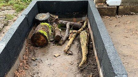 Logs in the planters will naturally break down and decay, providing nutrients for the plants. Pictur