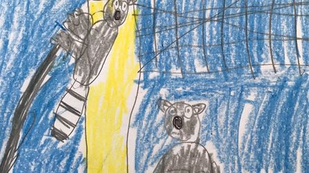 Issy's drawing of the lemurs at Axe Valley Animal Park. Picture: Katherine Ashbullby