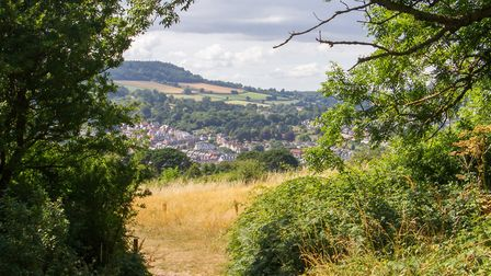 Salcombe Hill, where Nicki Parkin's story is set. Ref shs 30 18TI 8666. Picture: Terry Ife