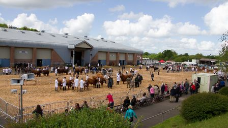 The Devon County Show. Ref shs 20 17TI 3396. Picture: Terry Ife