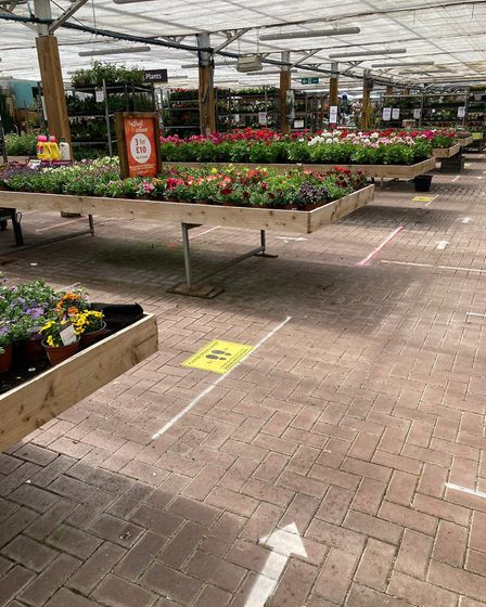 Widely spaced display stands and a one-way system at the garden centre. Picture: John Giblin, Otter