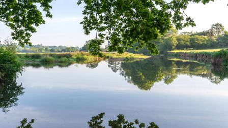 A tranquil scene on the River Otter near Ottery St Mary Picture: Alex Walton Photography