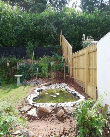 The pond, with the surroundings still taking shape, in the Greenslades' garden. Picture: Karen Green