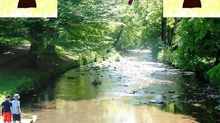 Friends of The Byes celebrates its tenth anniversary Picture: Friends of The Byes