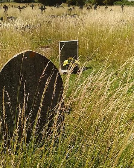 Sidmouth cemetery during lockdown. Picture: Jenny Ware