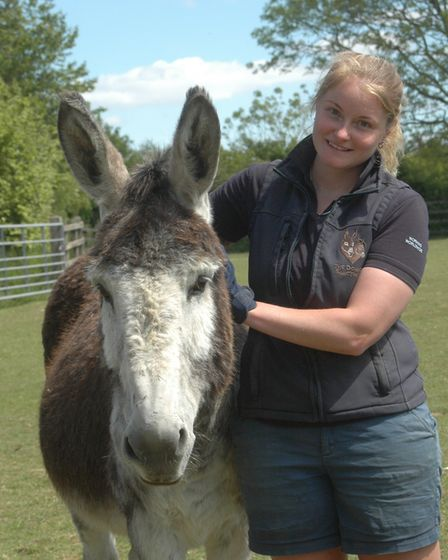 Rachel Hill with Pablo in the New Arrival Unit. Picture: The Donkey Sanctuary