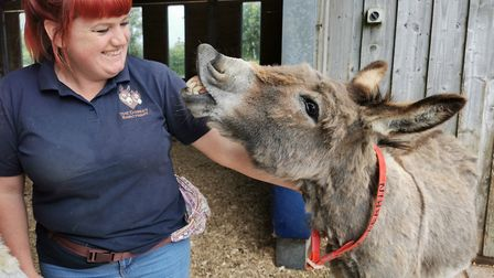 Groom Emma Taylor with RJ. Picture: The Donkey Sanctuary