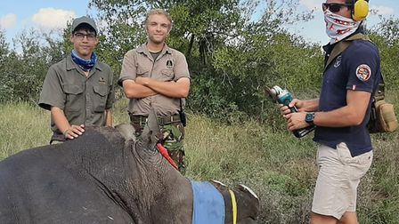 Sam, second from the right, helping Dehorn a rhino. Picture: Sam Leahy.