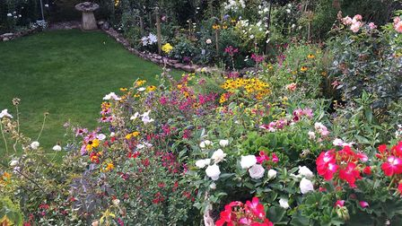 The garden at Fairpark. Picture: Lynette Talbot