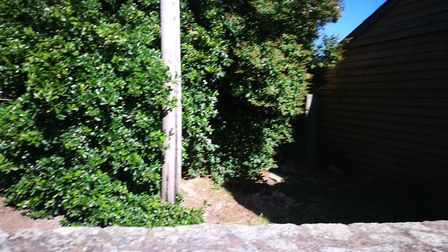 The area of land where a coral-themed garden is set to be in Sidmouth. Picture: Louise Cole