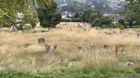 Sidmouth cemetery. Picture: Denise Bickley