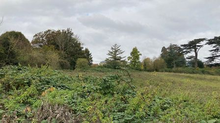 The field where the housing is proposed.