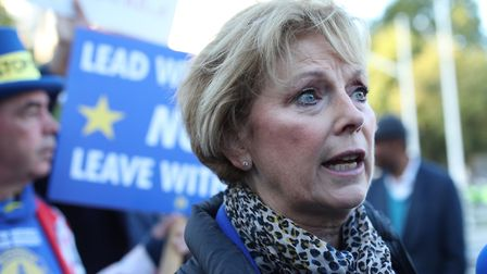 Anna Soubry outside the Houses of Parliament in London. Photograph: Yui Mok/PA.