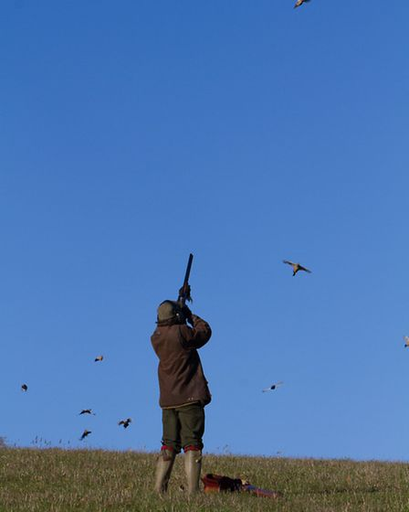 A beautiful day for shooting