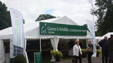 Were you at the first Scottish Game Fair?